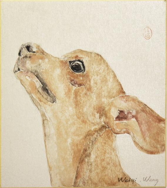 Weiqi Wang, 'Please', 2014, Ronin Gallery