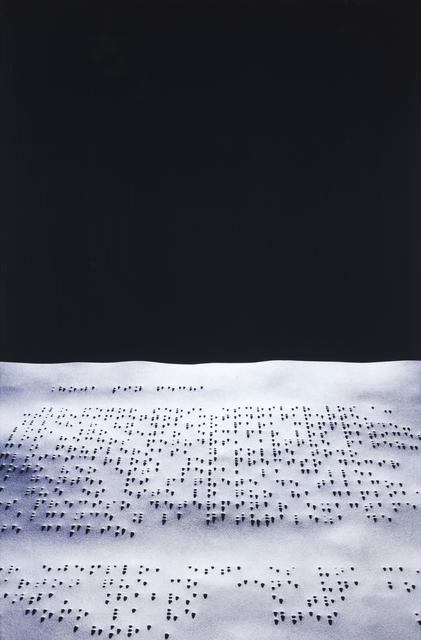 Joan Fontcuberta, 'Nausée (Sartre)', 1999, Veritas