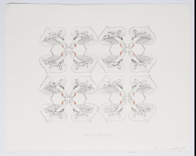 Ellen Rosenholtz, 'Bog Turtle (endangered)', 2018, Drawing, Collage or other Work on Paper, Graphite, watercolor on paper, InLiquid