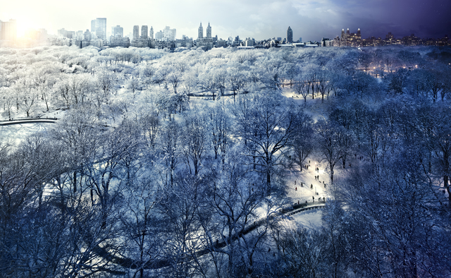 , 'Central Park Snow, New York,' 2010, Bryce Wolkowitz Gallery