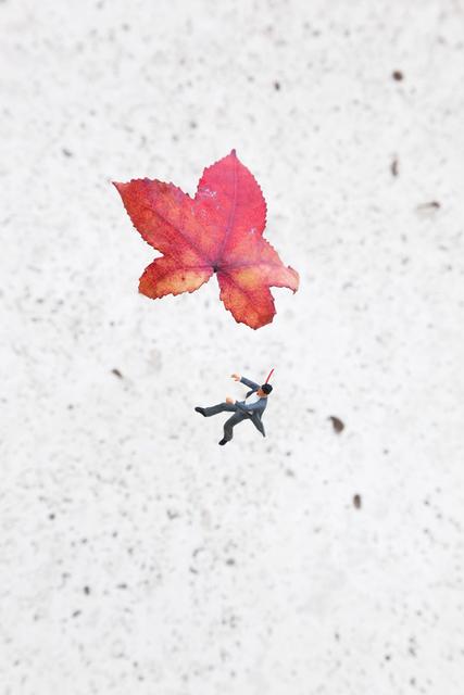 , 'Fall,' 2014, Andipa Gallery