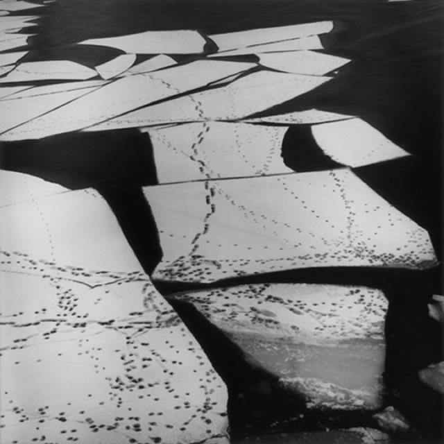 , 'SaltsjÖ-Boo, 1976,' , Michael Hoppen Gallery