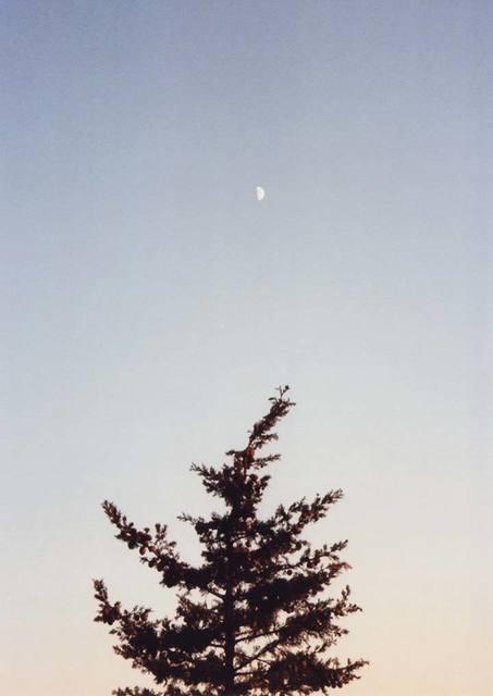 Ryan James MacFarland, 'Daymoon & Evergreen', 2010, Photography, Traditional C-Print, Uprise Art