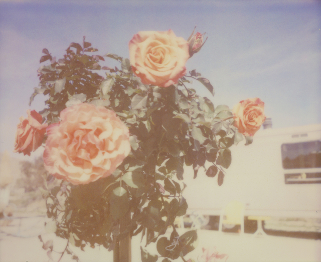 Stefanie Schneider, 'A Sunny Morning (The Girl behind the White Picket Fence) ', 2013, Photography, Analog C-Print, hand-printed by the artist on Fuji Crystal Archive Paper, based on a Polaroid, mounted on Aluminum with matte UV-Protection, Instantdreams