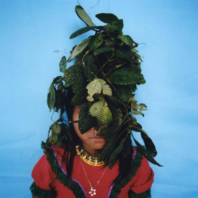 Karen Paulina Biswell, 'Jagua (painting with nature) ', ca. 2014, Photography, C-Type Hand Printing, Kominek Gallery