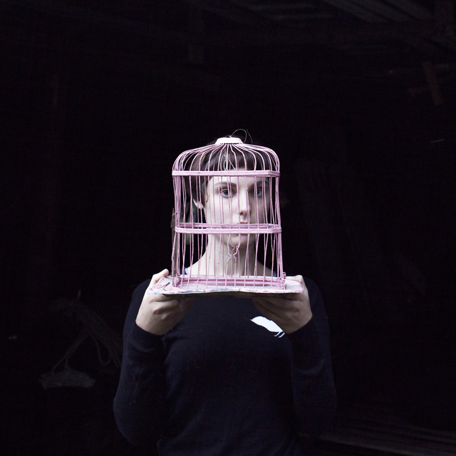 , 'Birdcage,' 2013, photo-eye Gallery