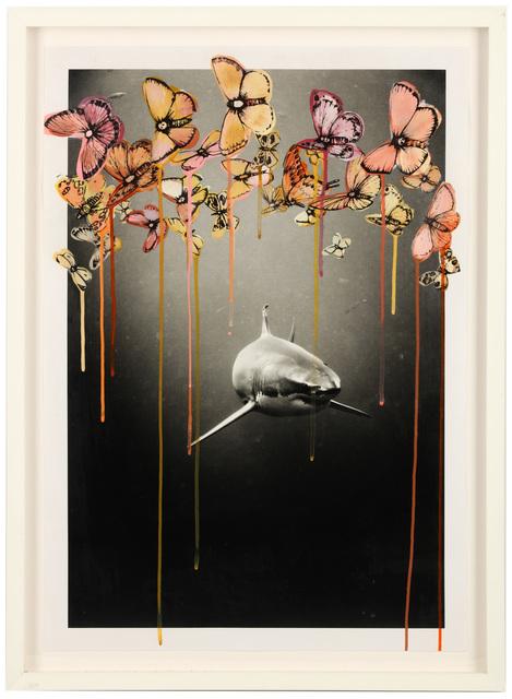 Sage Vaughn, 'Focus', Chiswick Auctions