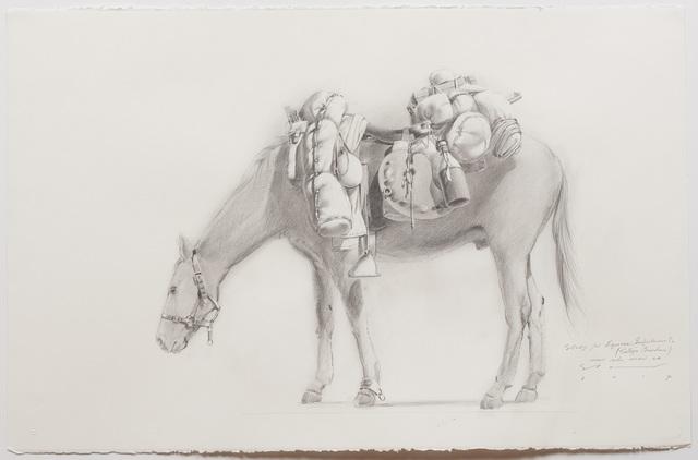 , 'Study for 'Equine Impedimenta' - Tully's Burden (near side view LH),' 2017, Australian Galleries