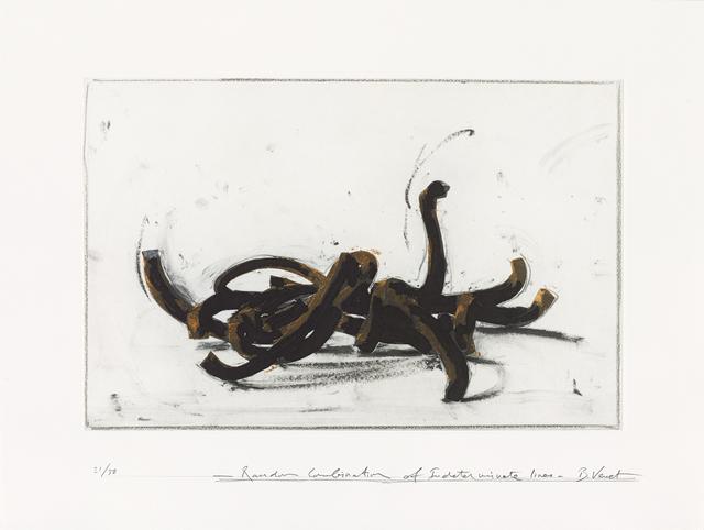 Bernar Venet, 'Random Combination of Indeterminate Lines', 2019, Galerie Boisseree
