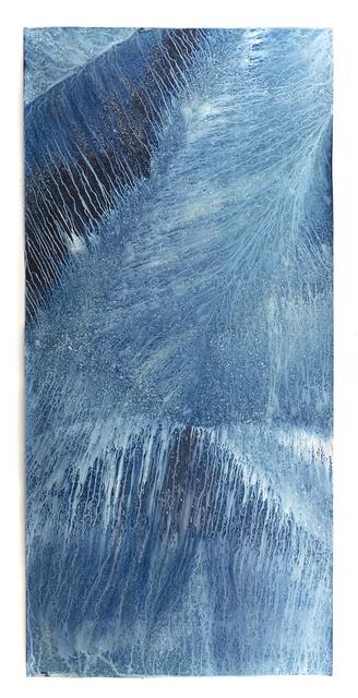 , 'Ecotone #662 (Bainbridge Island, WA 07.18.19, Draped on Fence Post and Rain Garden, Showers),' 2019, Haines Gallery