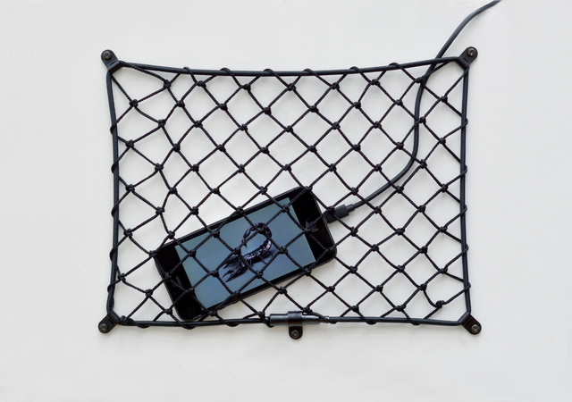 , 'Net #1 (Pandinus Dictator series),' 2016, 22,48m2