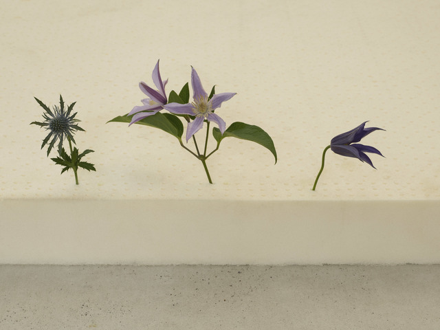 casper sejersen, 'Three Flowers in the Right Order', 2019, Cob