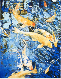 Eleven Fish