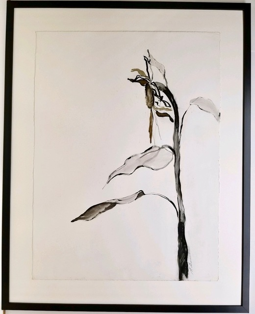 , 'Sunflowers 3,' 2018, The White Gallery