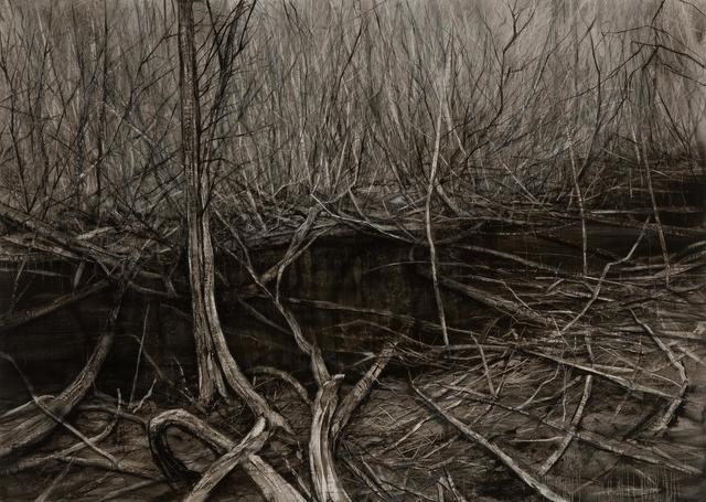 Nicholas Blowers, 'Narcissus, Lake St Clair Leatherwood Interior', 2015, Nanda\Hobbs