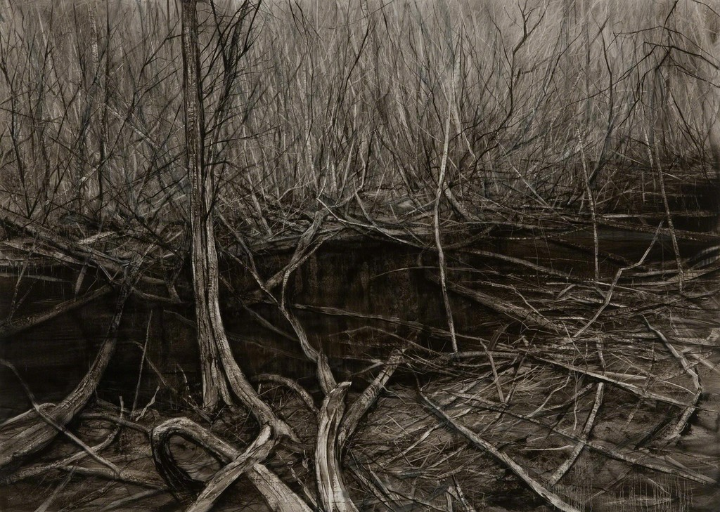 nicholas blowers narcissus lake st clair leatherwood interior  nicholas blowers narcissus lake st clair leatherwood interior 2015 nanda