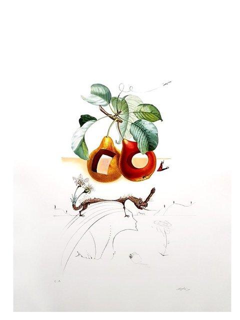 """Salvador Dalí, 'Original Lithograph """"Flordali - Holes Fruits"""" by Salvador Dali', 1969, Galerie Philia"""