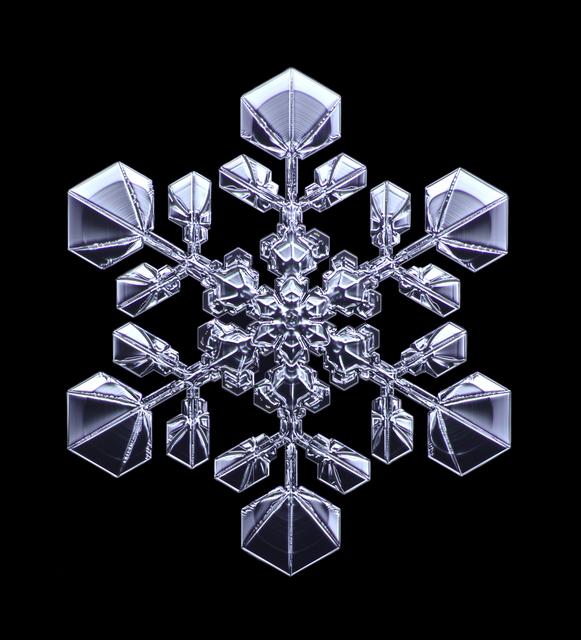 , 'Snowflake #5,' 2016, Richard Levy Gallery