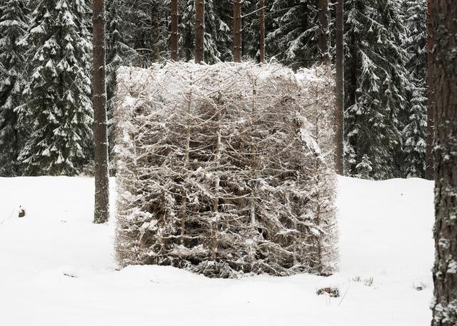 , 'Forest (White),' 2016, Galerie Anhava