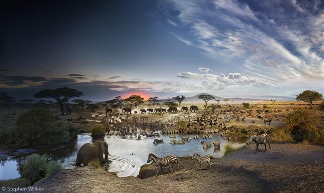 , 'Serengeti National Park, Tanzania - Day to Night,' , ARTITLEDcontemporary