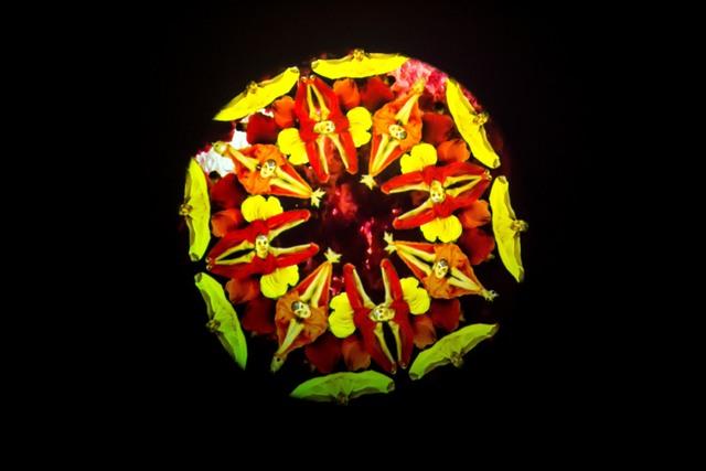 , 'Fire Mandala,' 2018, C24 Gallery