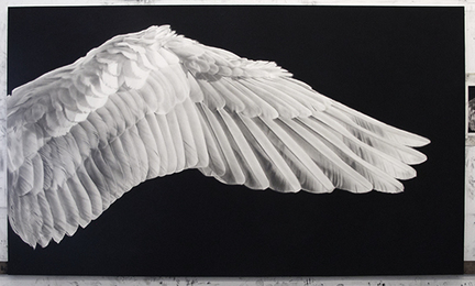 Untitled (Gabriel's Wing)