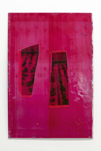 , 'Magenta Specs,' 2017, Ribordy Contemporary