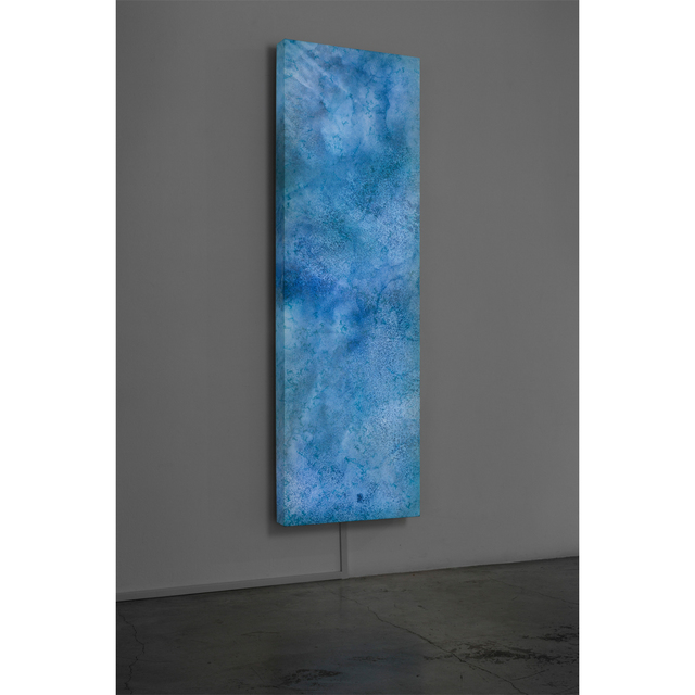 , 'The River is Within Us,' 2015, STPI