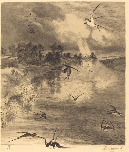 Félix Bracquemond, 'Les Hirondelles (The Swallows),' ca. 1884, National Gallery of Art, Washington, D.C.