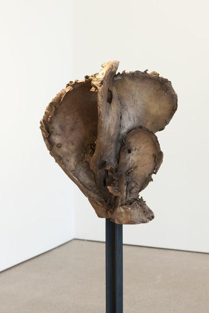 , 'Noeud 5.1- varia 02,' 2011, Galerie Greta Meert
