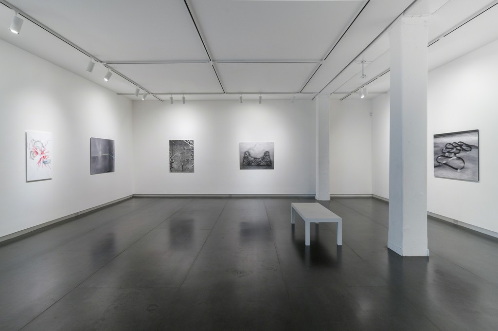 Photo by Mario Gallucci showing works by Ronny Quevedo, Sharon Koelblinger and Harold Mendez.