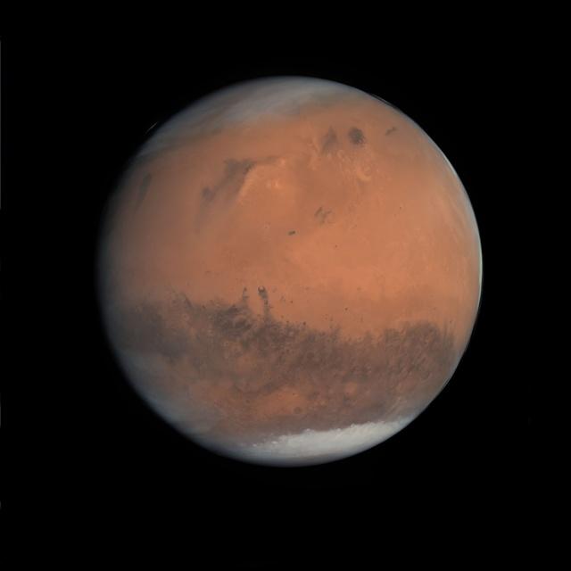 , 'Gibbous Mars, Rosetta, 24 February 2007,' 2012, Flowers