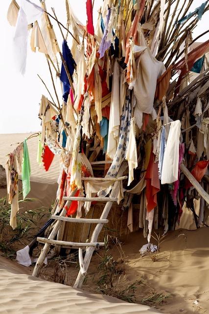 , 'Unrevealed, Site 3 (Ladder),' 2009, Rubin Museum of Art