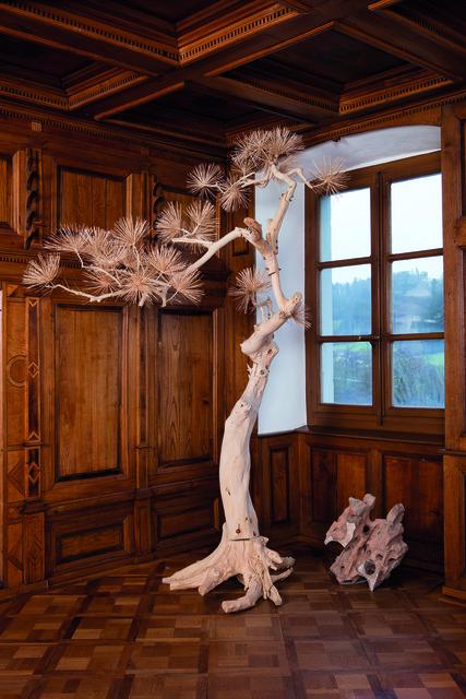 , 'Lack Pine Tree,' 2011, Kunstmuseum Bern