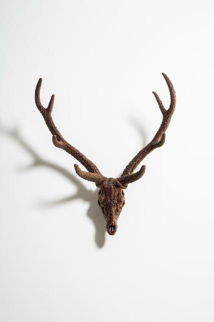 , 'Villus-Deer Skull(Mica),' 2016, Arario Gallery