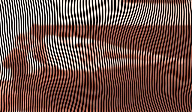 , 'O30,' 2017, De Buck Gallery