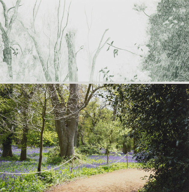Gabriela Albergaria, 'Harcourt Arboretum, 641', 2011, Drawing, Collage or other Work on Paper, Drawing on Stonehenge paper and digital print on Epson paper, Galeria Vera Cortês