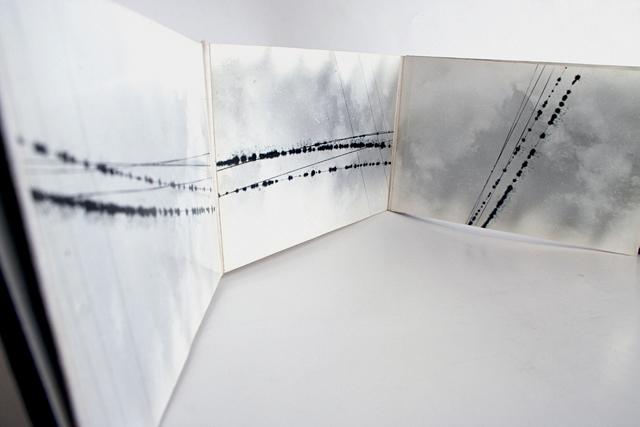 , 'Composições no Fio / Partituras Mutantes,' 1979, Galeria Nara Roesler