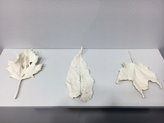 , 'Groups of Leaves,' 2016, A.I.R. Gallery