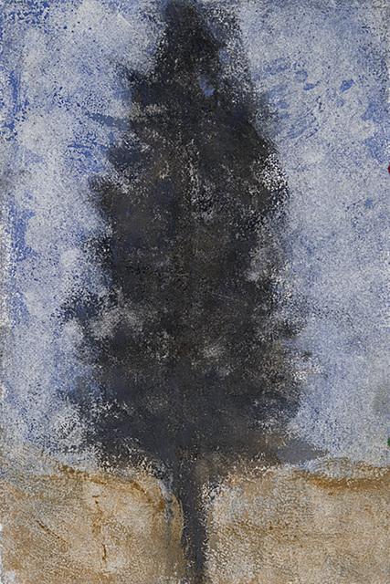 , 'Charcoal Tree,' 2013, David Richard Gallery