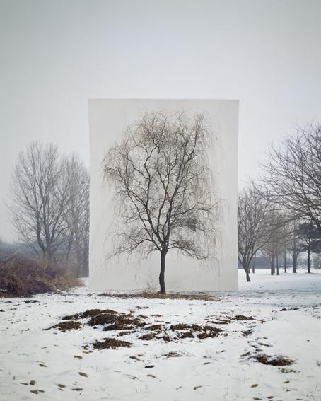 , 'Tree #3,' , Gallery Hyundai
