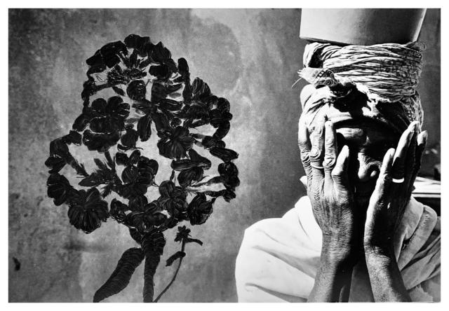 , 'Phlox Hiding,' 1995, SL Gallery