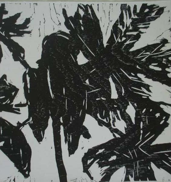 , 'Série Icanhema, PA,' 2012, Mercedes Viegas Arte Contemporânea