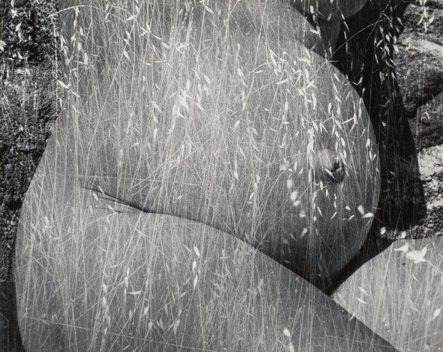 Ruth Bernhard, 'Harvest', 1953, Heritage Auctions