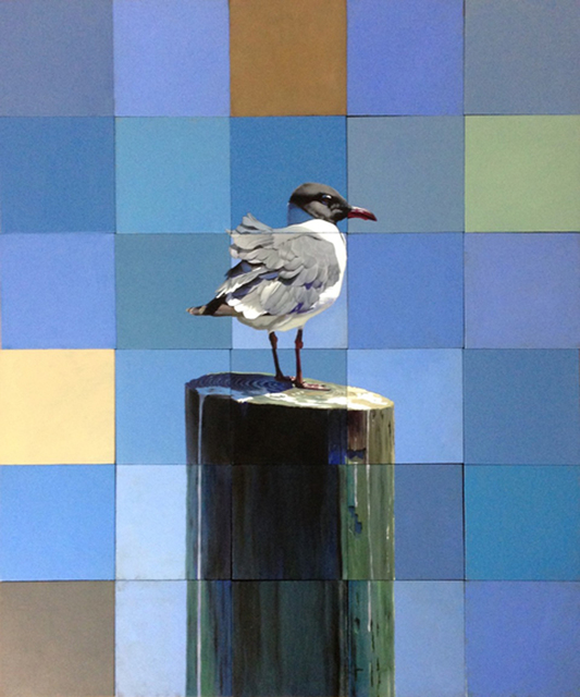Jeff Cohen, 'Laughing Gull', 2016, Claire Carino Contemporary