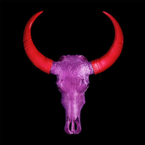 , 'Chinese Water Buffalo Skull – Purple Skull with Red Horns on Black – Small,' 2018, M1 Fine Art