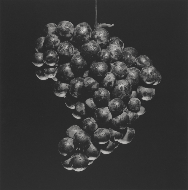 , 'Grapes,' 1985, J. Paul Getty Museum