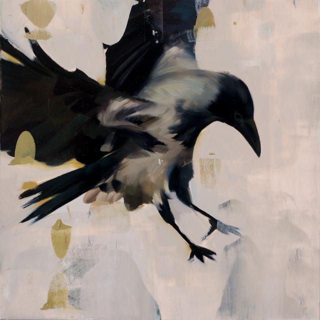 Alpay Efe, 'Canus', 2016, Abend Gallery