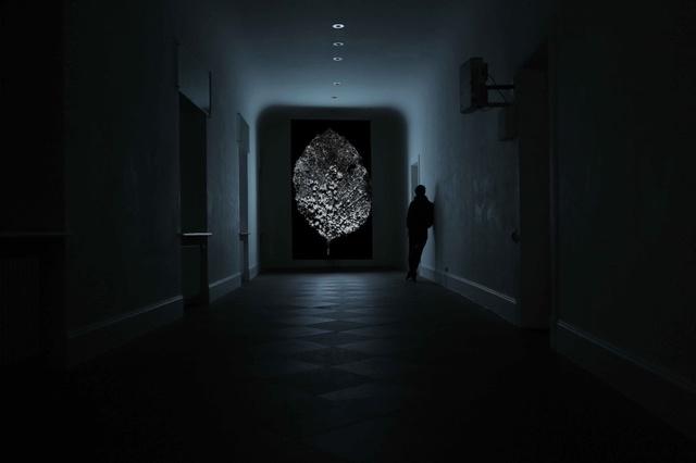 , 'Frozen Leaf,' 2012, Anima Mundi