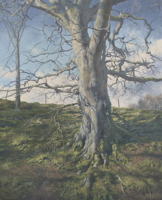 , 'Tree Study (Winter),' 2016, The Scottish Gallery